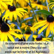 Le salut est à notre Dieu - Apocalypse 7:10 - Méditations quotidiennes -  Journal Chrétien